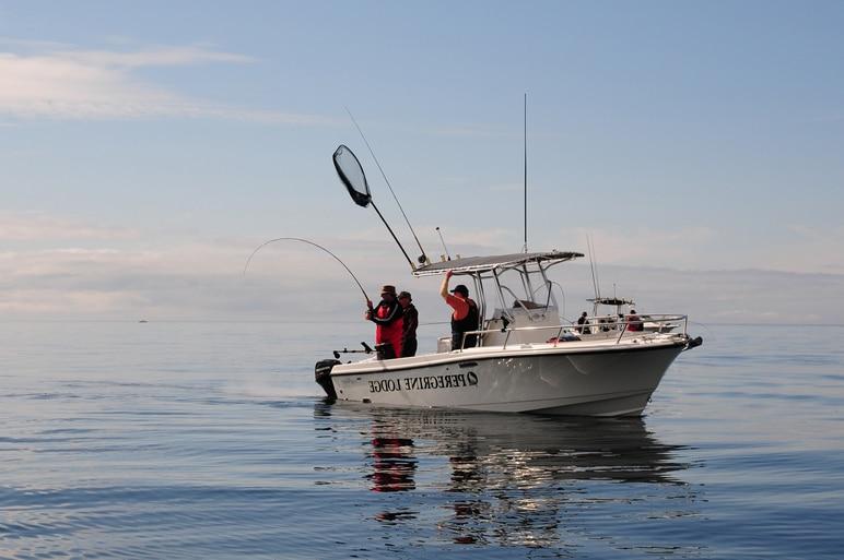 Fishing Boat 8