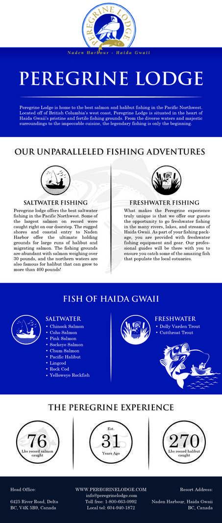 Fishing Adventure Infographic