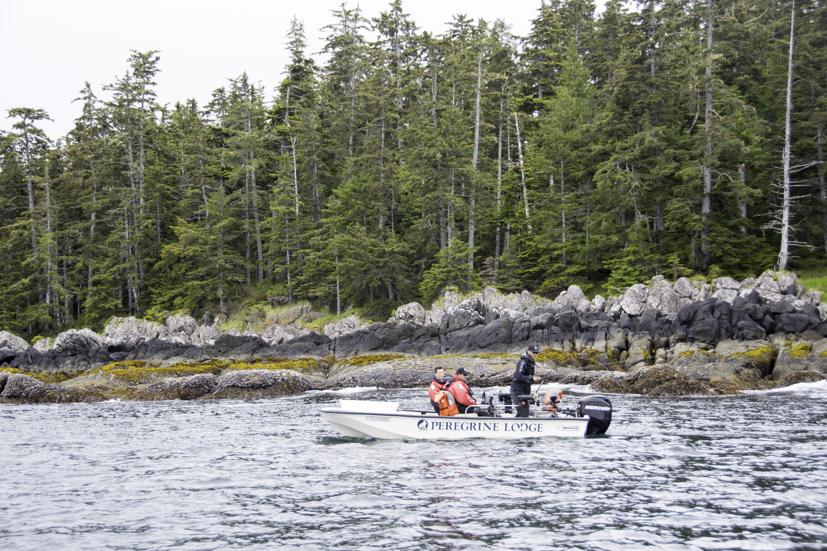 Haida Gwaii Fishing, sport fishing, salmon fishing, fishing adventure