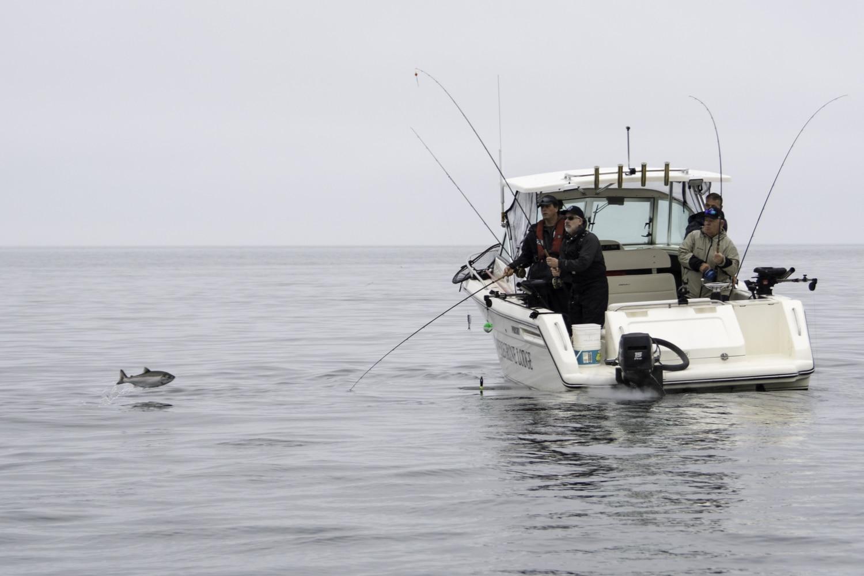 Coho salmon fishing, fishing trip, saltwater fishing